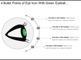 4 Bullet Points Of Eye Icon With Green Eyeball And Black Eyelashes