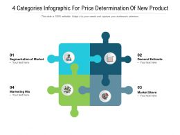 4 Categories Infographic For Price Determination Of New Product