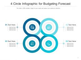 4 Circle For Budgeting Forecast Infographic Template