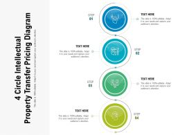 4 Circle Intellectual Property Transfer Pricing Diagram