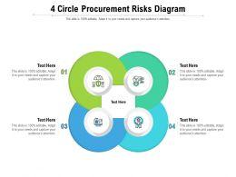 4 Circle Procurement Risks Diagram