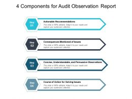4 Components For Audit Observation Report