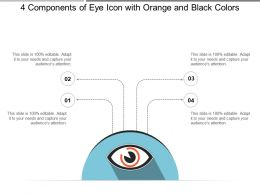 4 Components Of Eye Icon With Orange And Black Colors