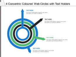 4 Concentric Coloured Web Circles With Text Holders