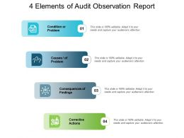 4 Elements Of Audit Observation Report
