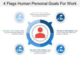 4 Flags Human Personal Goals For Work