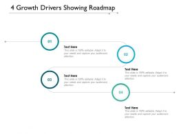 4 Growth Drivers Showing Roadmap