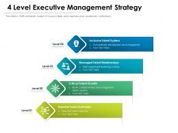 4 Level Executive Management Strategy