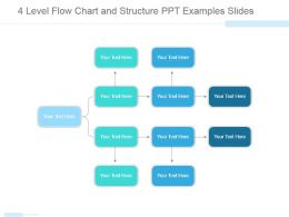 4 Level Flow Chart And Structure Ppt Examples Slides