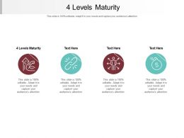 4 Levels Maturity Ppt Powerpoint Presentation Pictures Brochure Cpb