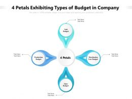 4 Petals Exhibiting Types Of Budget In Company