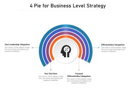 4 Pie For Business Level Strategy