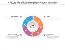 4 Puzzle Pie Of Launching New Product In Market
