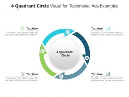 4 Quadrant Circle Visual For Testimonial Ads Examples Infographic Template