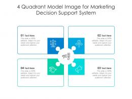 4 Quadrant Model Image For Marketing Decision Support System Infographic Template