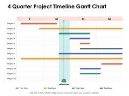 4 Quarter Project Timeline Gantt Chart Ppt Powerpoint Presentation Portfolio Outfit