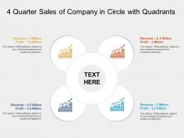 4 Quarter Sales Of Company In Circle With Quadrants