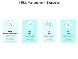 4 Risk Management Strategies Ppt Powerpoint Presentation Infographic Template Cpb