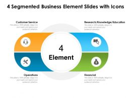 4 Segmented Business Element Slides With Icon