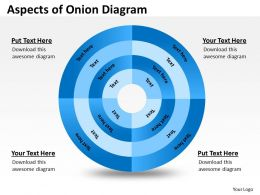 4 Staged Onion Diagram