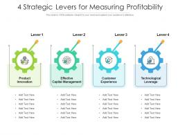 4 Strategic Levers For Measuring Profitability