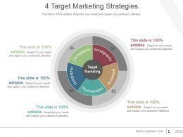 4 Target Marketing Strategies Example Of Ppt Presentation