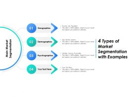 4 Types Of Market Segmentation With Examples