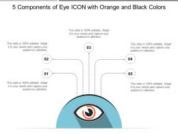 5 Components Of Eye Icon With Orange And Black Colors