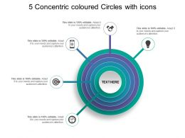 5 Concentric Coloured Circles With Icons