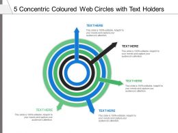 5 Concentric Coloured Web Circles With Text Holders