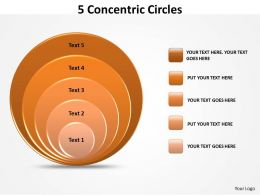 5 Concetric Circles Diagram For Strategy