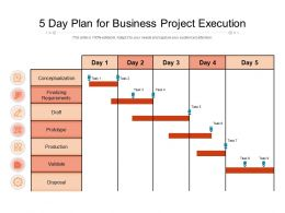 5 Day Plan For Business Project Execution
