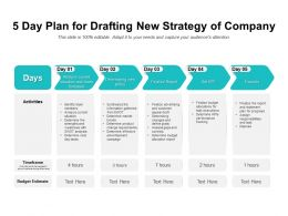 5 Day Plan For Drafting New Strategy Of Company