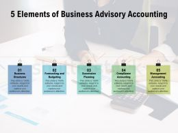 5 Elements Of Business Advisory Accounting