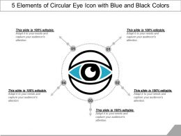 5_elements_of_circular_eye_icon_with_blue_and_black_colors_Slide01