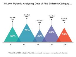 5 Level Pyramid Analysing Data Of Five Different Category In Percent