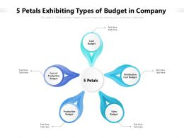 5 Petals Exhibiting Types Of Budget In Company