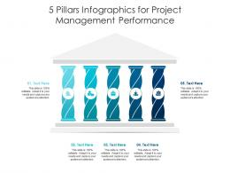 5 Pillars For Project Management Performance Infographic Template