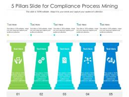5 Pillars Slide For Compliance Process Mining Infographic Template