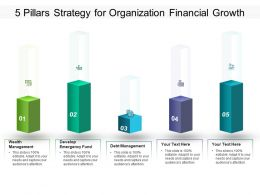 5 Pillars Strategy For Organization Financial Growth