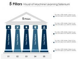5 Pillars Visual Of Machine Learning Selenium Infographic Template