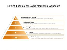5 Point Triangle For Basic Marketing Concepts