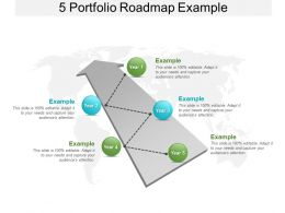 5 Portfolio Roadmap Example