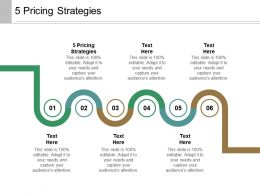 5 Pricing Strategies Ppt Powerpoint Presentation Infographics Outfit Cpb