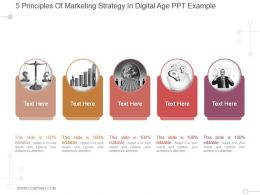 5 Principles Of Marketing Strategy In Digital Age Ppt Example