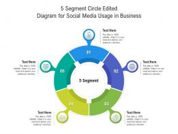 5 Segment Circle Edited Diagram For Social Media Usage In Business Infographic Template