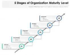 5 Stages Of Organization Maturity Level