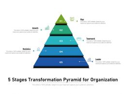 5 Stages Transformation Pyramid For Organization