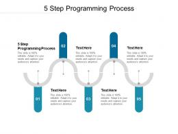 5 Step Programming Process Ppt Powerpoint Presentation Icon Slides Cpb
