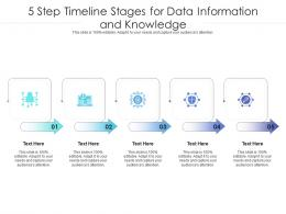 5 Step Timeline Stages For Data Information And Knowledge Infographic Template